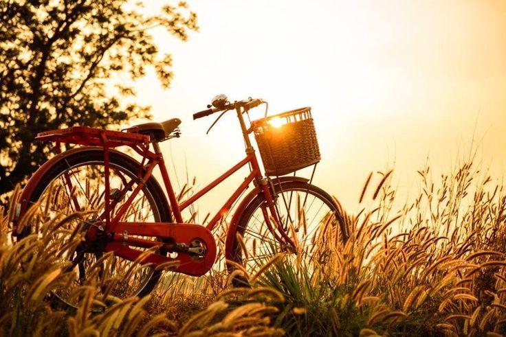 Bicycle rides! http://www.tresorhotels.com/en/offers/119/city-tour-sta-trikala