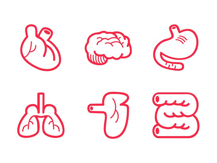 The Human Body Icon 6-Pack by Logan Faerber for DockYard