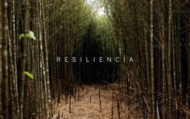 Resiliencia: definición y significado     La resiliencia, según la definición de la Real Academia Española de la Lengua es la capacidad ...