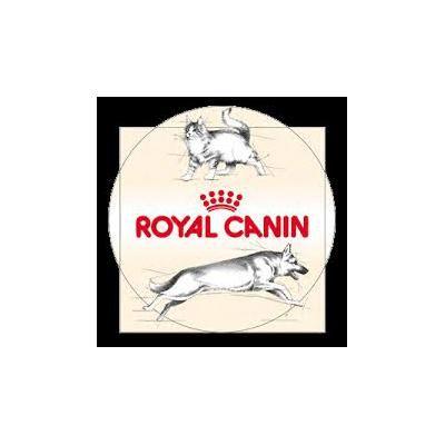 VENTA de alimento balanceados marca eukanuba , royal canin , proplan , dog chow , ecelentt, kongo  http://malvinasargentinas.anunico.com.ar/aviso-de/animales_mascotas/venta_de_alimento_balanceados_marca_eukanuba_royal_canin_proplan_dog_chow_ecelentt_kongo-8232409.html