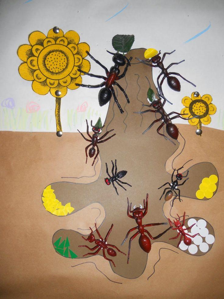 """Blog de Convivencia: Igualdad y Paz. CEIP Santa Isabel Almería: Proyecto """"Los insectos """" en Infantil 4 años"""