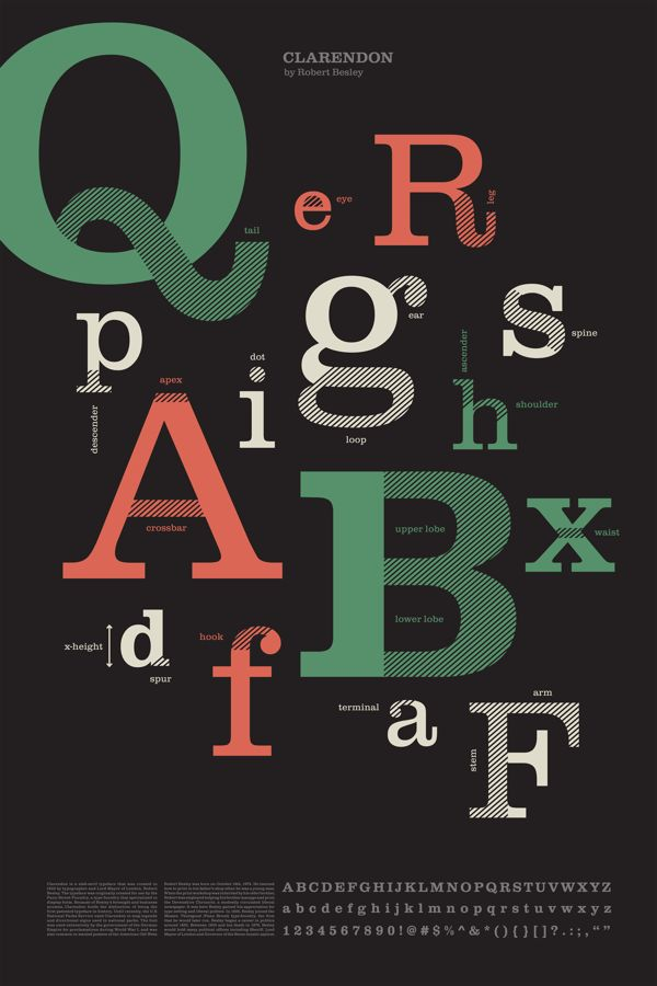 Anatomy of Type Poster on Behance