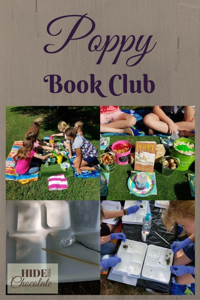 The book Poppy, by Avi, gave us a terrific opportunity to learn about…well…owl poop. This month was our Poppy Book Club, so, of course, we dissected owl pellets.