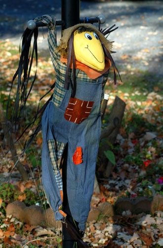 Scarecrow Pictures: A Contradictory But Cute Halloween Scarecrow