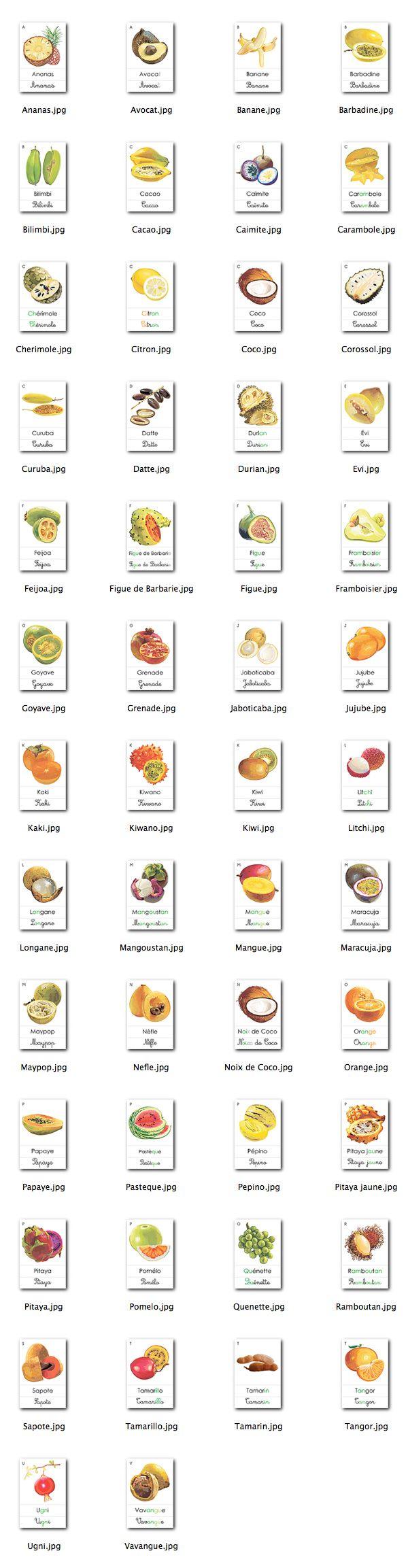 Fruit Qui Commence Par V. Fruit Qui Commence Par V With Fruit Qui ...