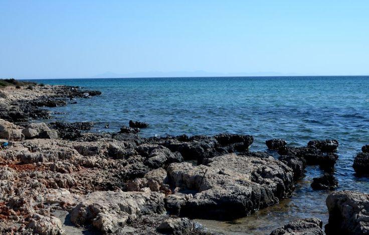 2013 Summer & İmbat - Didim, Aydın