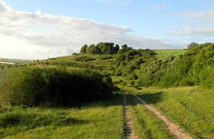 Laverstock downs