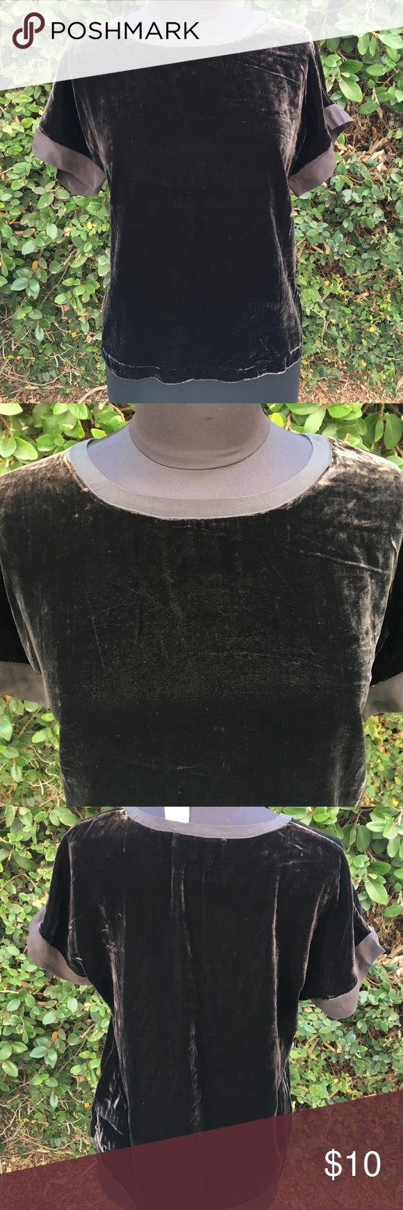 Chocolate Velvet Tee☕️🍪☕️ Yummy Velvet Tee with soft silk trim on sleeves , complete your fall wardrobe , great with skirts or skinnys !! 🍂🍁🏈🍂🍁 Tops Tees - Short Sleeve