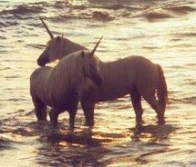 Unicorns - the National Animal of Scotland