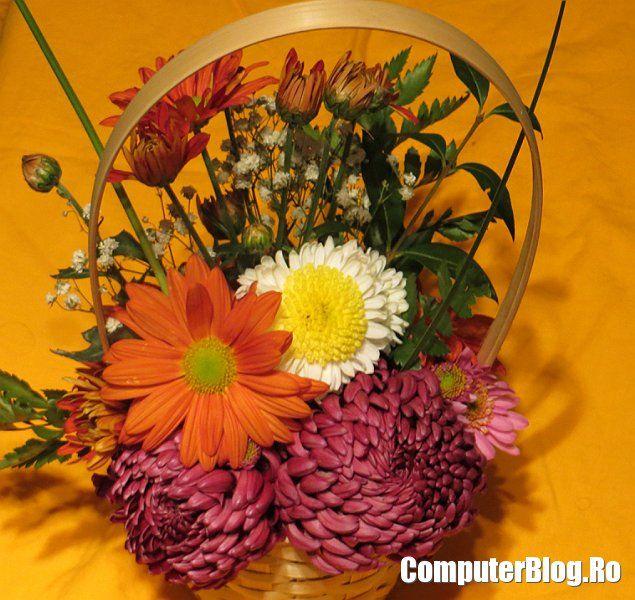 Cos cu flori - Canon PowerShot SX260 HS    http://www.computerblog.ro/drive-test/canon-powershot-sx260hs-camera-foto.html