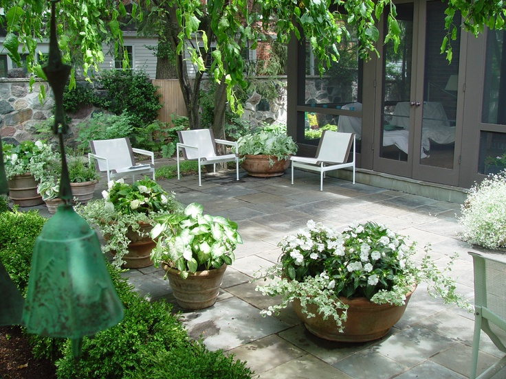 white flowers in containers - pleasant: White Flowers, Container Gardens, Garden Ideas, White Garden, Garden Backyard, Outdoor Spaces, Dirt Simple