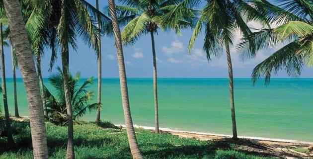 4 escenarios de playa en Campeche . Famosa por su intensa actividad petrolera y por el delicioso sabor de su cocina típica, la costa campechana también ofrece hermosas playas ideales para admirar las azules aguas del Golfo de México.