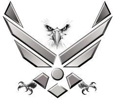 Air Force eagle my new tattoo                                                                                                                                                     More