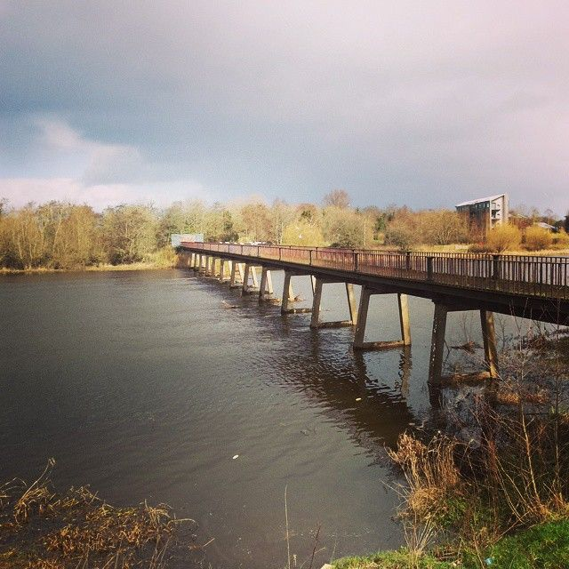 """#blackbridge #ul #universityoflimerick #bridge #seagulls #birds #limerick #ireland"""