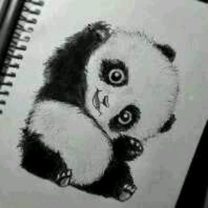 Panda. Aw so cute