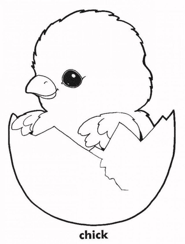 21 Best Photo Of Chicken Coloring Pages Chicken Coloring Pages