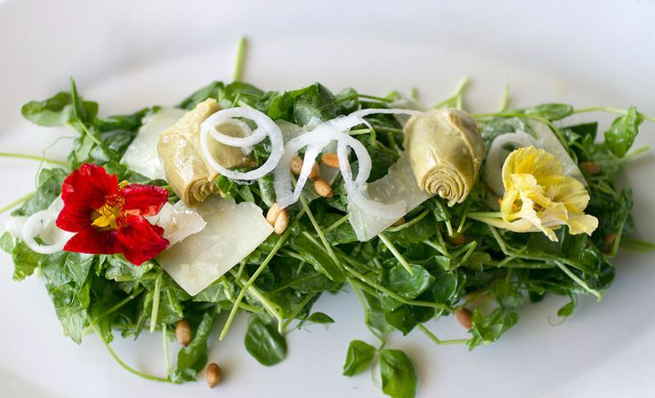 230 best Tampa St Pete Restaurants to try images on Pinterest
