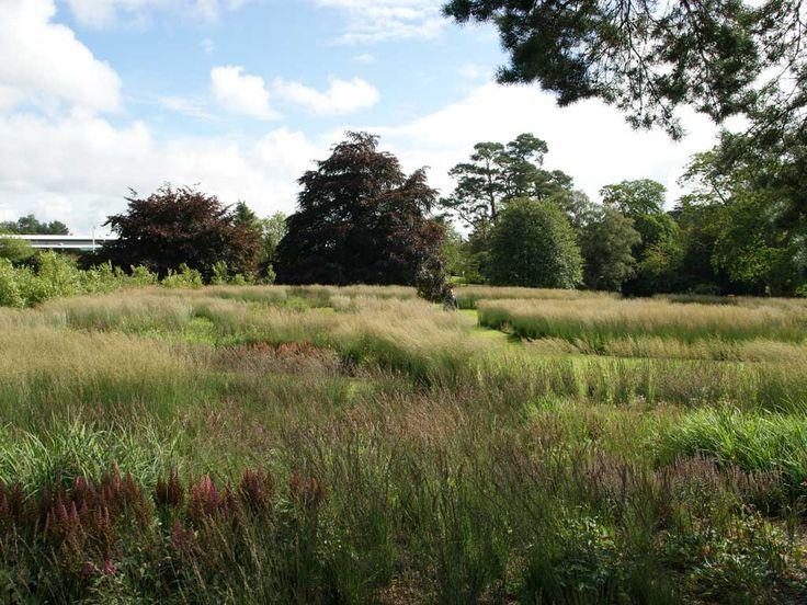 Piet Oudolf Public Garden Trentham Estate Trentham