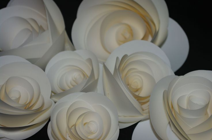 Small paper roses. By MiaBella Paper Flower Productions