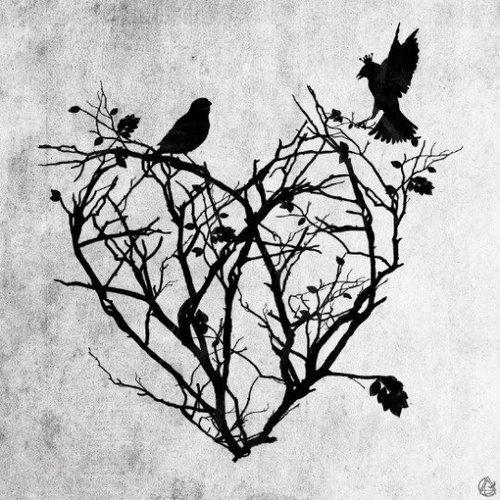heart, bird, and art image