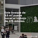 Green City Solutions creó una pared de musgo que cumple el trabajo de 274 árboles.