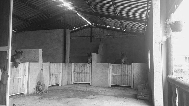 New stable block at monte de dios
