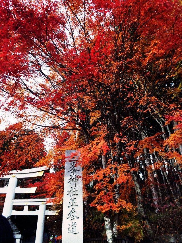 「あなたの秋の楽しみ&冬の楽しみを教えてください」(くれたけ#49)