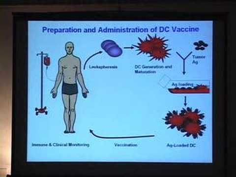 Using Dendritic Cells to Create Cancer Vaccines    ----    Stanford University