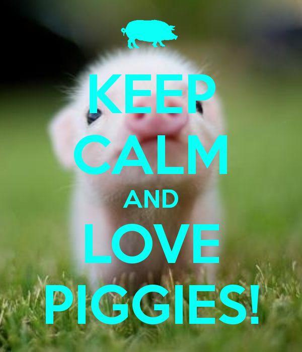 KEEP CALM AND LOVE PIGGIES!