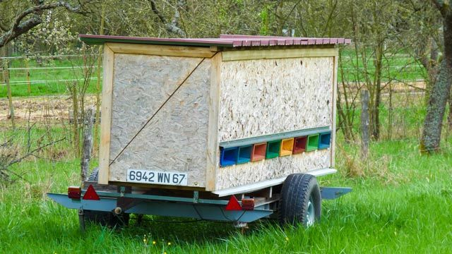 Ruche mobile by Letiva