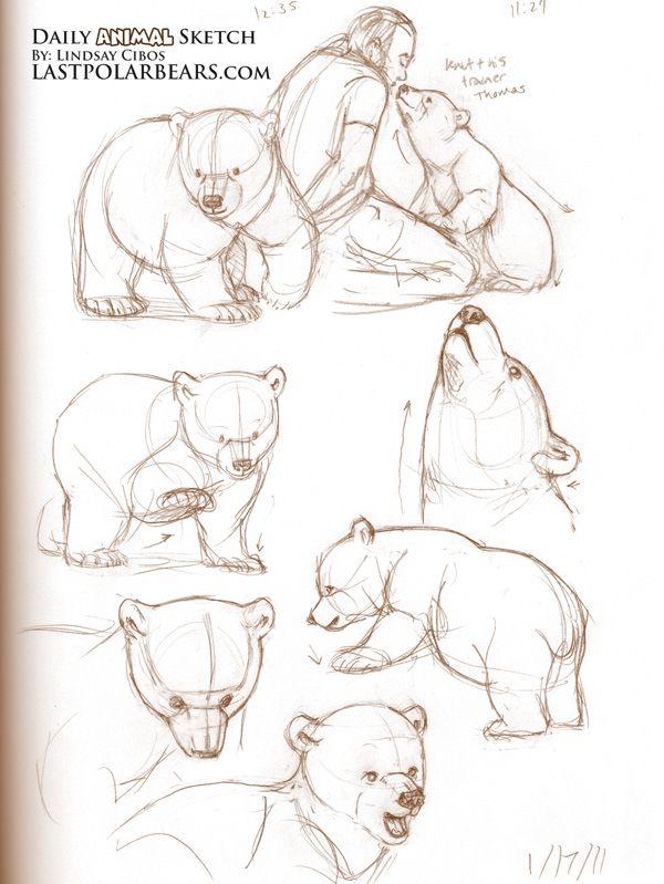 Daily_Animal_Sketch_070