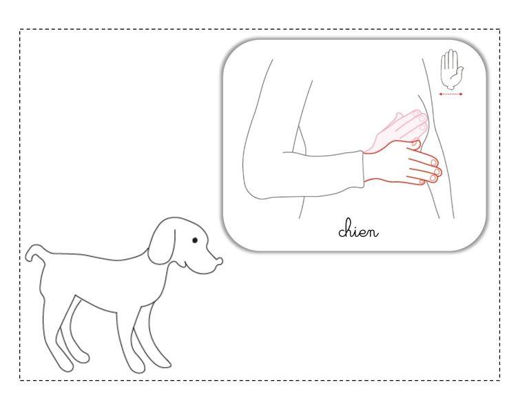 chien illustration LSF