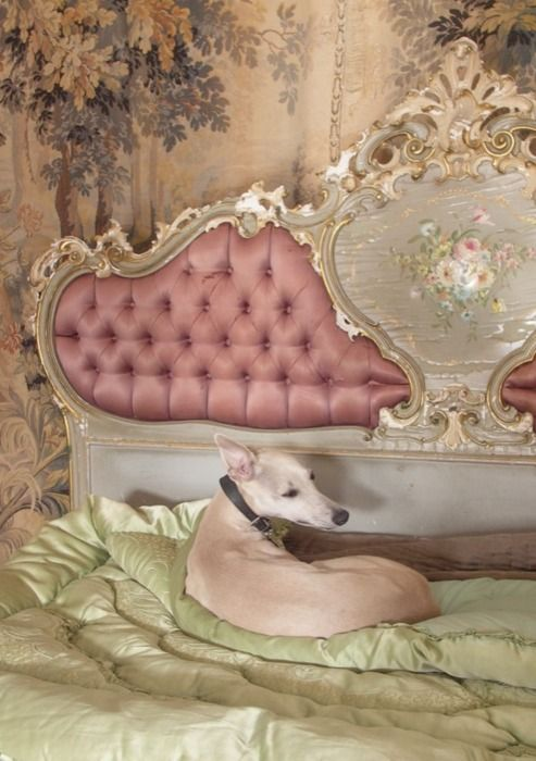 now this is a bed fit for a princess-at-heart