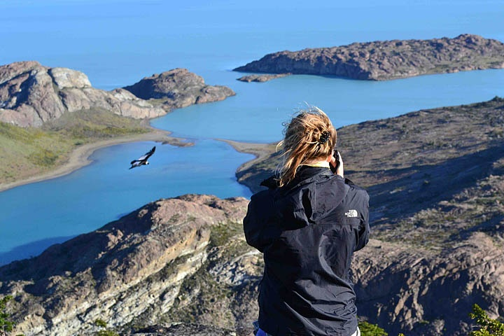 Photographing Andean Condors, El Calafate, Argentina.  Photo: Dr. Charles A. Munn. Luxury Amazon & South American Wildlife Tours.