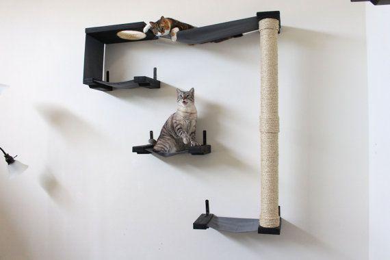 Kat van de Sky Track  kat hangmat planken