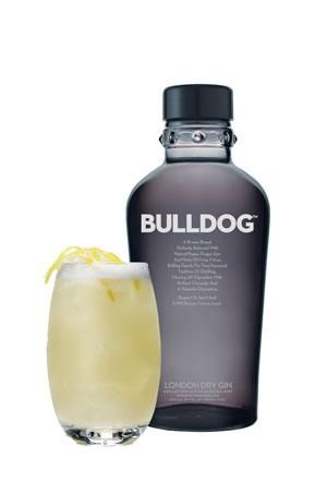 Cocktail: Bulldog Tom Collins til forret.