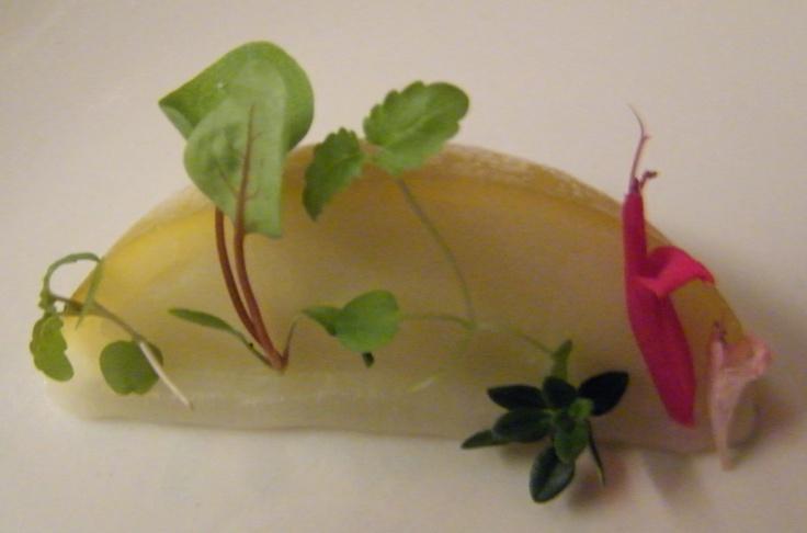 Sour Lemon with citrus leaves