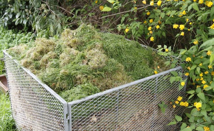 Vom Rasenschnitt zum perfekten Kompost