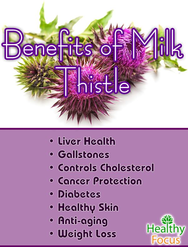 8 Proven Milk Thistle Benefits