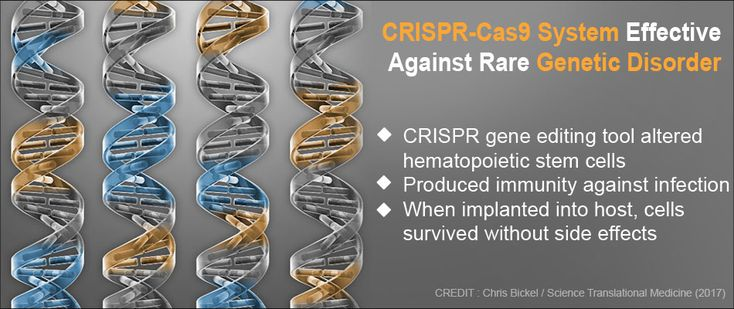 CRISPR-Cas9 Effective Against Genetic Disorder