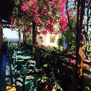 Traditional Greek Kafenion at Candia Park Village #candiaparkvillage  photo credits @alexafas