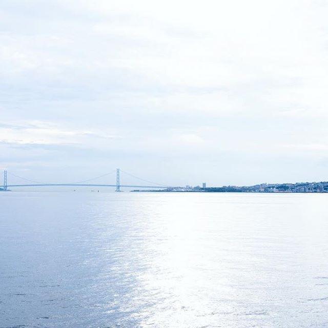 遠くに明石海峡大橋。 #明石海峡大橋 #ルミナス神戸2 #ルミナス #客船 #神戸港 #神戸 #メリケンパーク #オリエンタルホテル #写真撮ってる人と繋がりたい #カメラ部 #カメラ散歩 #α7ii