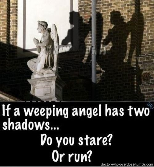 Run. The Vashta Nerada are living life forms. And because they can obviously see the Weeping Angel, the Weeping Angel cannot move and is therefore neutralized. The Vashta Nerada becomes the threat, and we all know the only defence against them...