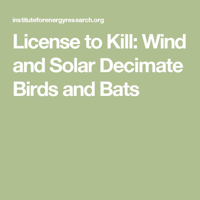 License to Kill: Wind and Solar Decimate Birds and Bats