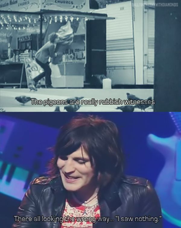 Noel fielding  Pigeons are rubbish witnesses