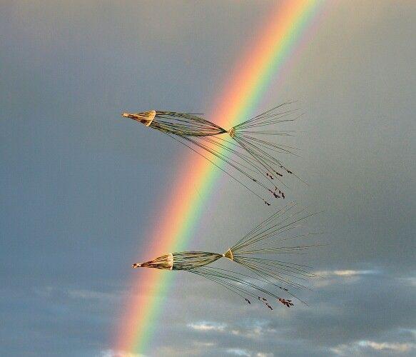 PINTEREST 22 Aug. Mark Porter (photo). 'Go with The Flow/Flying Fish' by Ken Heyns and Margie Ford. Site_Specific #LandArtBiennale. #LandArt #Plett