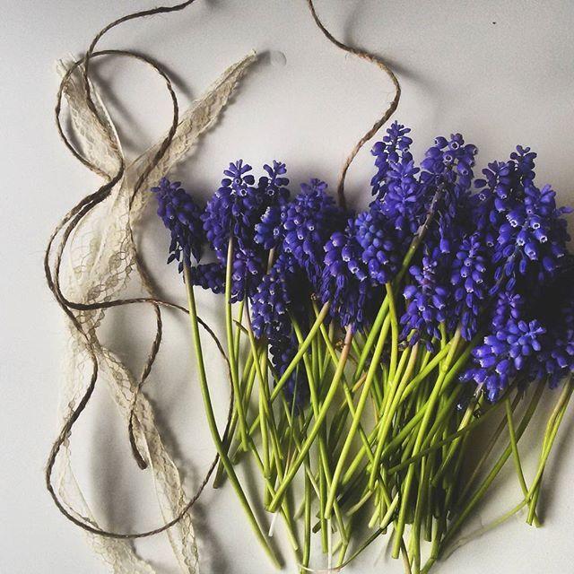 mrs.g.a.l.aSzafirki:) Natura obsypała mi nimi całą działkę #szafirki#flowers #flower#kwiaty#love#flowerstagram #flowerpower #myloves#instagram#idiosyncrasyï#blueflowers#pieknie#beutiful#grapehyacinth #spring#wiosna#działka #flower #kwiat #wiosna #flowers #spring #kwiaty #fleur #flor #garden #nature #kocham #fiore #poland #love #цветок #natura #przyroda#kwiecień#muscari