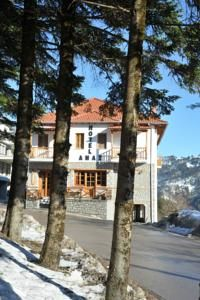 Anax Hotel:Metsovo Hotels/ Ξενοδοχεία Μέτσοβο:http://www.rooms-2-let.com/hotels.php?id=798