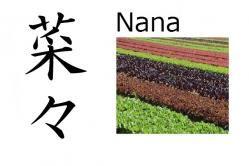 Nana (variedad de verdes) Significado: verdes, plantas, y verduras de varios tipos Lectura: Nana Nombre de: Chica La sílaba 'na' es muy común en nombres de chica y su significado es 'verdura, fruta o planta'