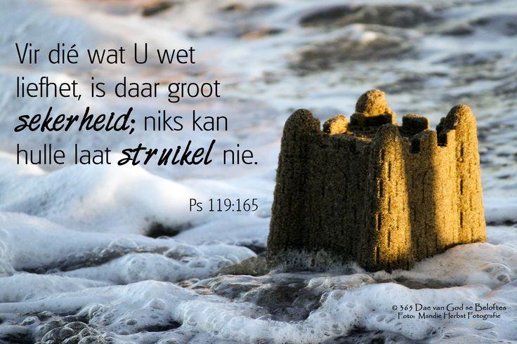 Bybelvers: Psalm 119:165 Vir dié wat U wet liefhet, is daar groot sekerheid; niks kan hulle laat struikel nie.